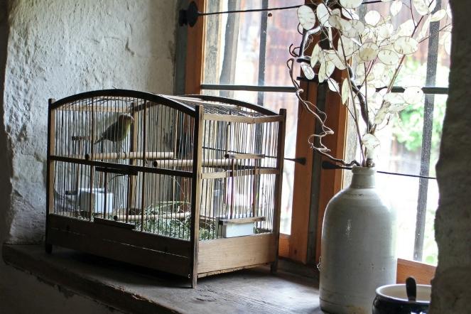 birdincage2