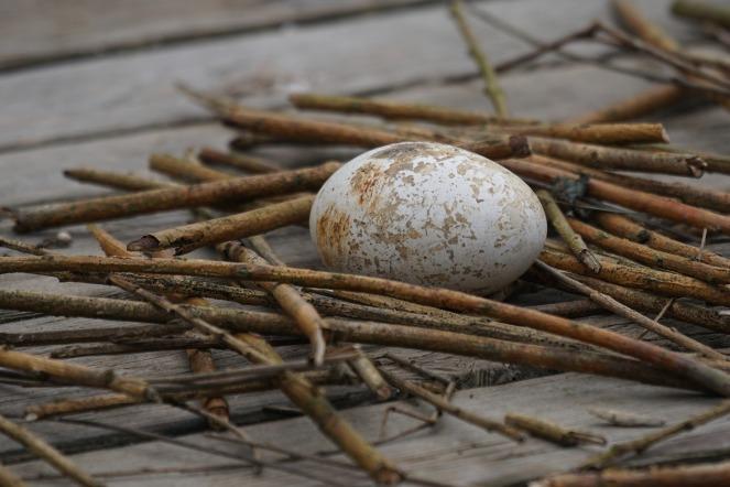 eggandsticks